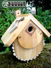 Image of Forest Nest Box - FN1
