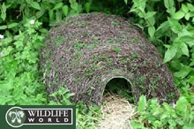 Image of Natural Hedgehog House - HH5