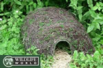 Small Image of Natural Hedgehog House - HH5