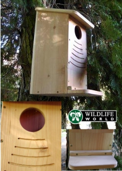 Image of Squirrel Nest Box - RSB