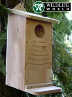 Small Image of Squirrel Nest Box - RSB