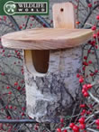 Robin Box - Natural Silver Birch - N8