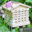 Small Image of Solitary Bee Hive - SBH1