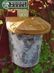 Small Image of Tit Box - Silver Birch - N7