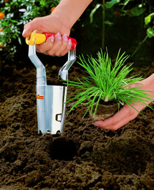Image of Wolf Bulb Planter - FHN