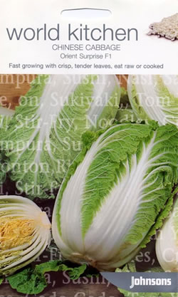 Image of World Kitchen Orient Surprise F1 Chinese Cabbage Seeds