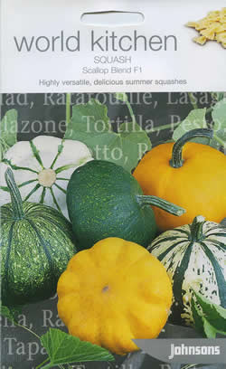 Image of World Kitchen Scallop Blend F1 Squash Seeds