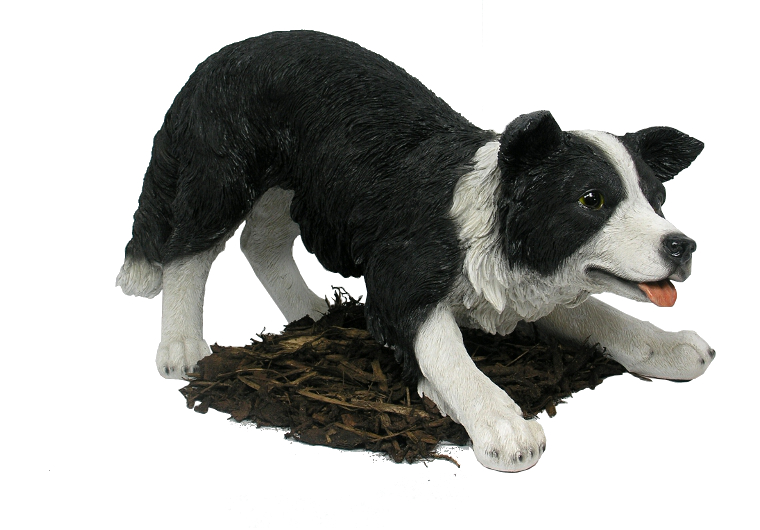 Border Collie Sheepdog Resin Garden Ornament 163 84 99