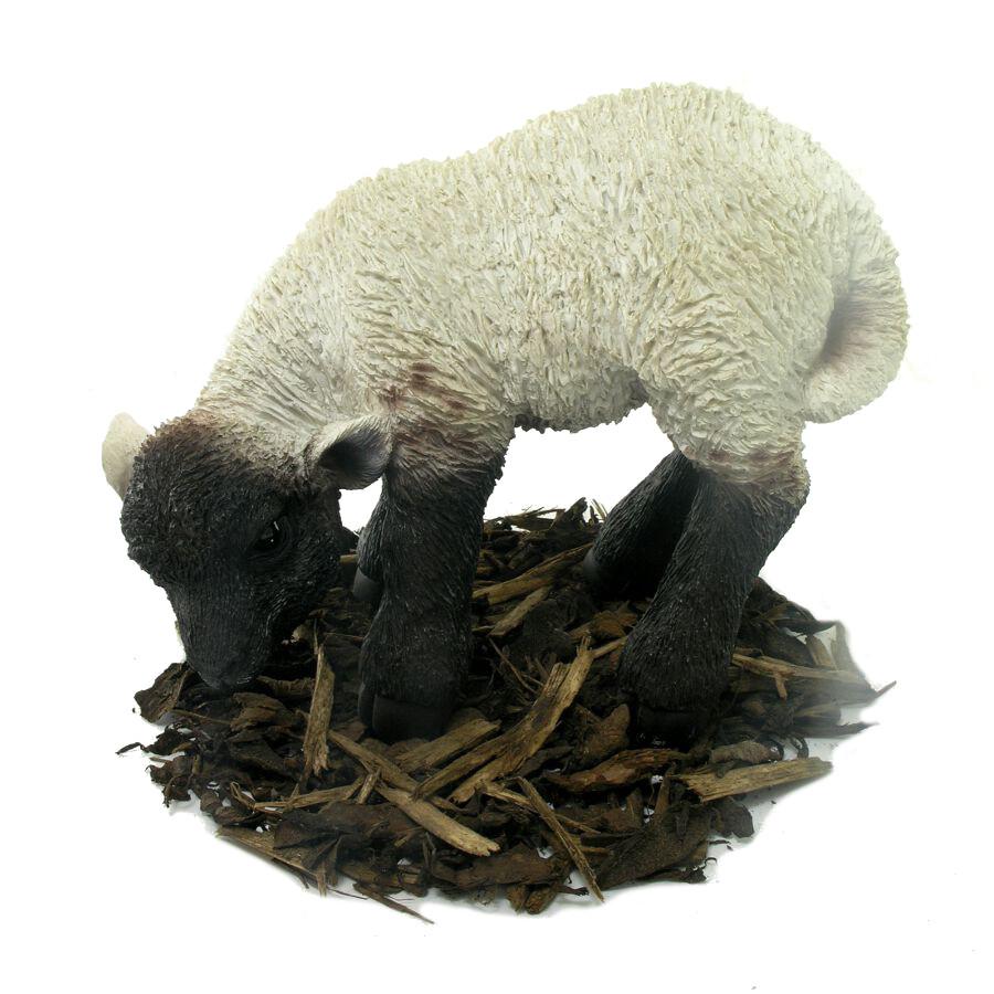 eating black and white lamb - resin garden ornament