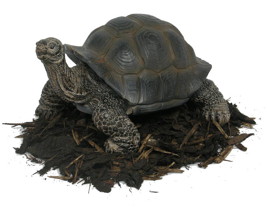 30cm Giant Tortoise Resin Garden Ornament 163 27 99