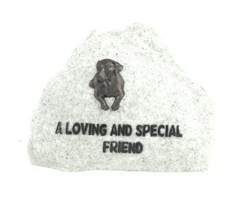 Special Friend - Dog Memorial Stone - Spin Image