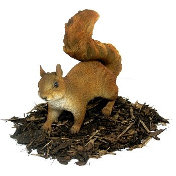 Red Squirrel - Resin Garden Ornament - Spin Image